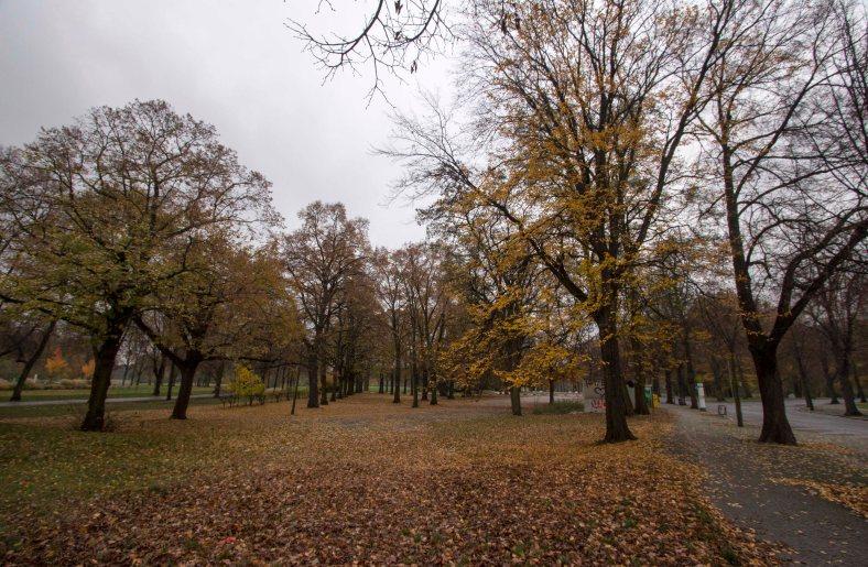 albin-muller-turm-und-park_1
