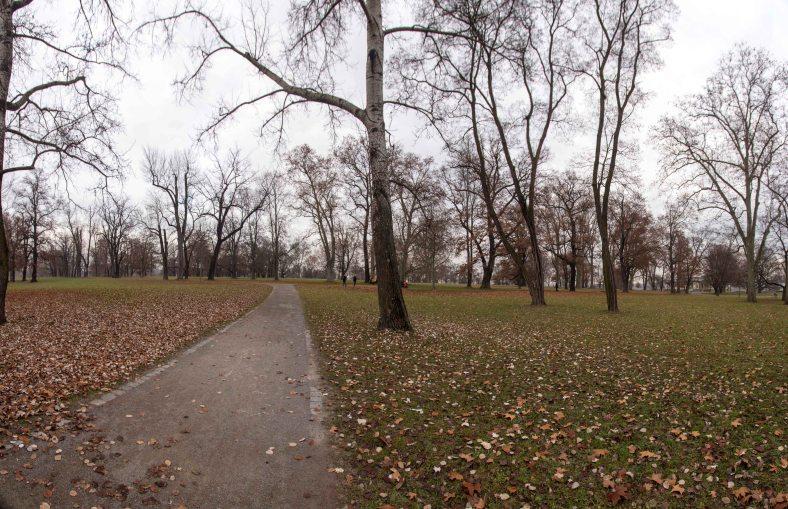 rosensteinpark-panorama