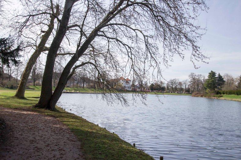 Wörlitzer Gartenparkt_14
