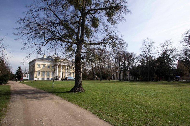 Wörlitzer Gartenparkt_7