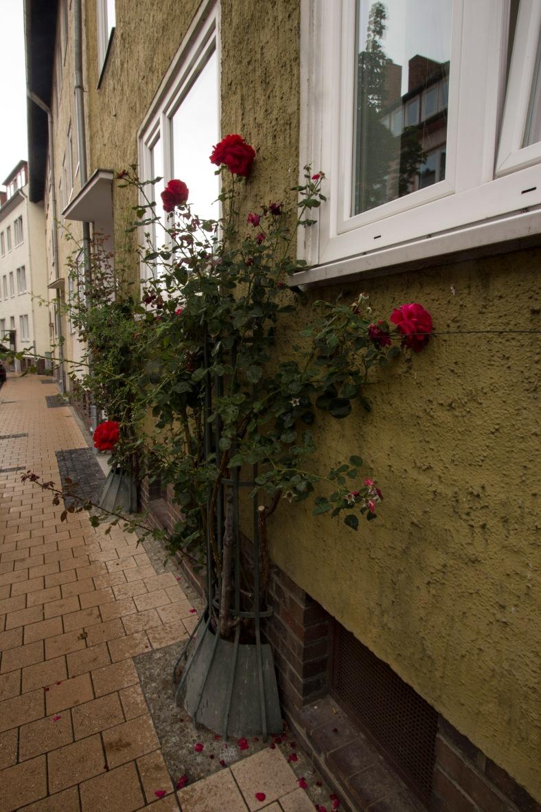 Hildesheim_38