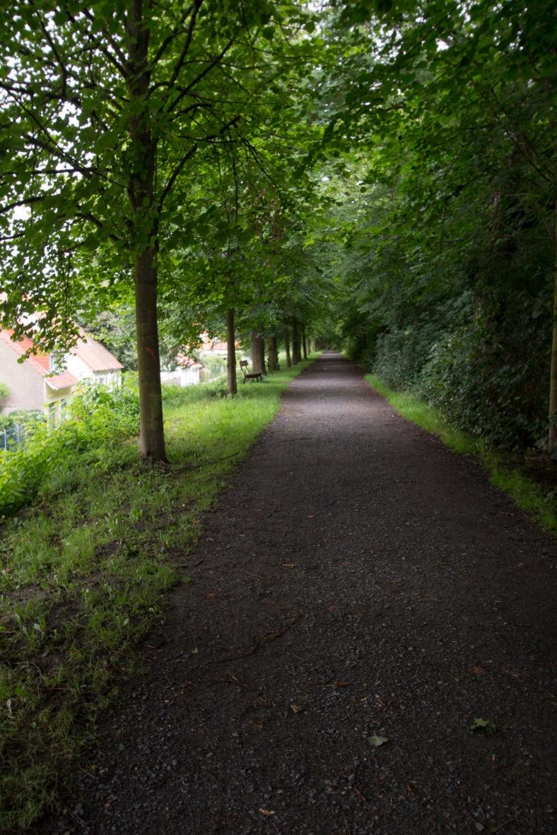 Hildesheim_79