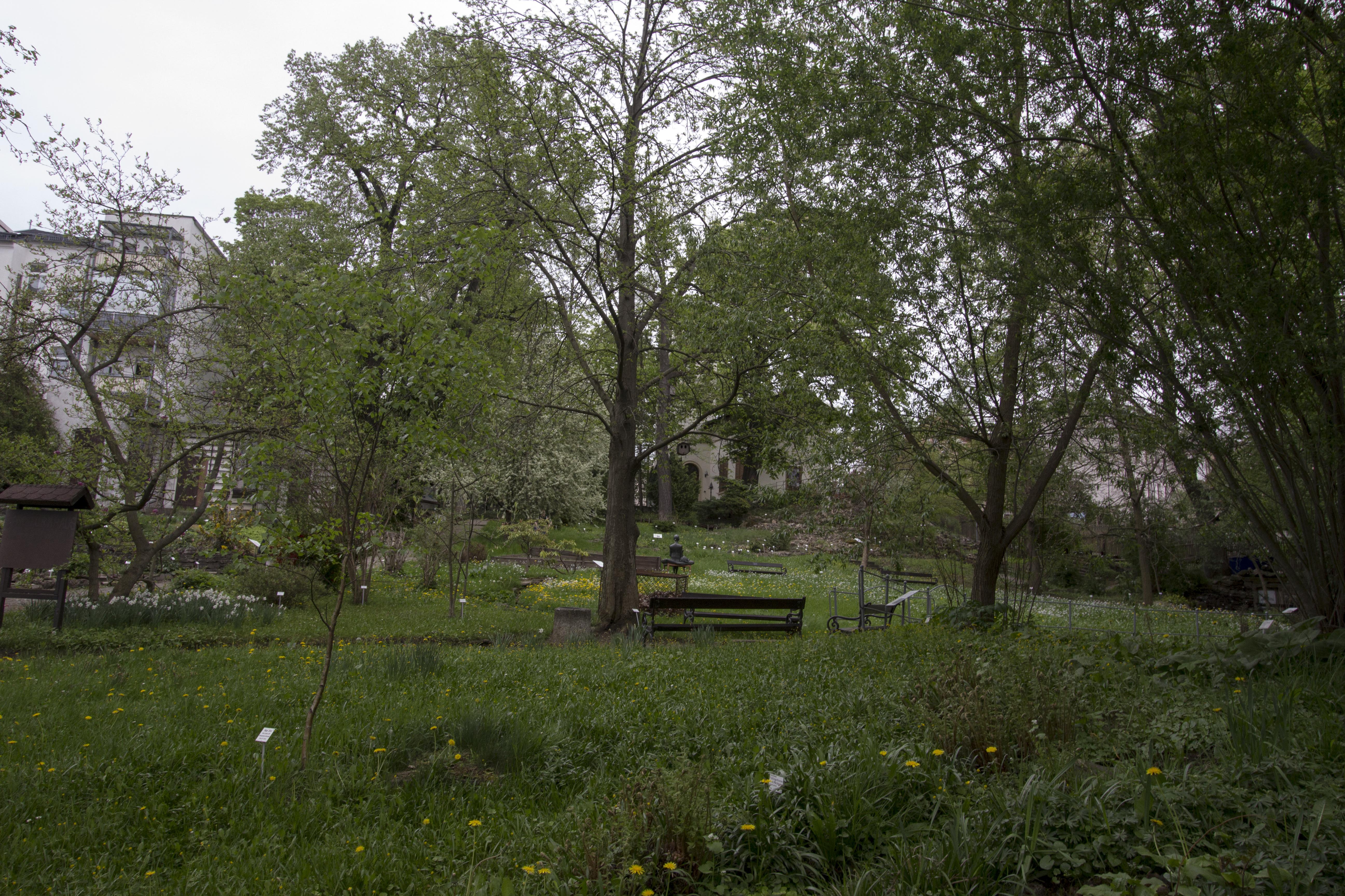 Natur, Parks_7