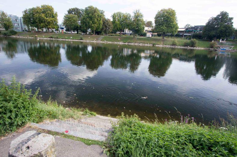 Donau_46
